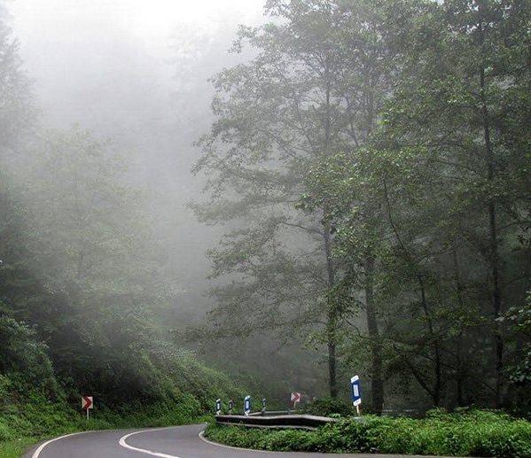 آبشار اوبن، آبشاری در میان درختان سر به فلک کشیده مازندران + تصاویر