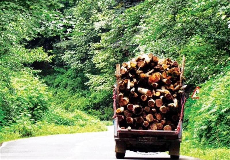 مامور منابع طبیعی شهرستان نور مجروح شد/ پای قاچاقچیان چوب در میان است