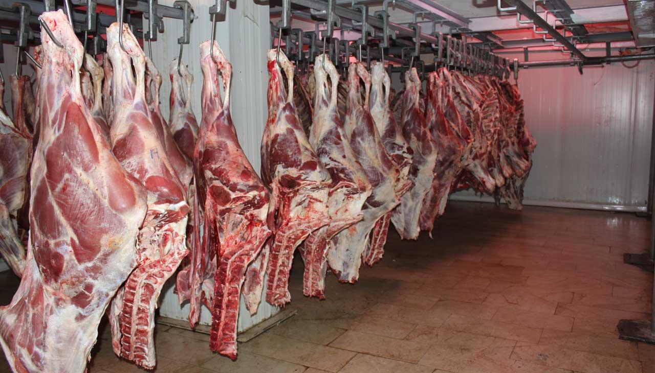 توزيع 2 تن گوشت گوسفند ميان نيازمندان در مازندران توسط آستان قدس رضوی
