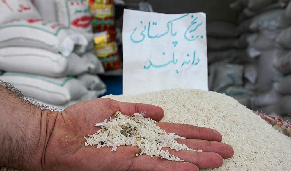 تصاویر / آفت واردات بلای جان برنج مازندرانی